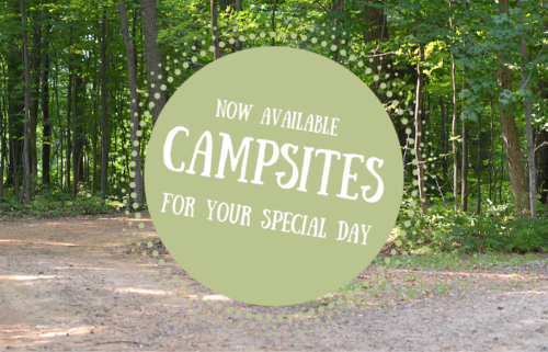 Campsites at Dixon's are now available