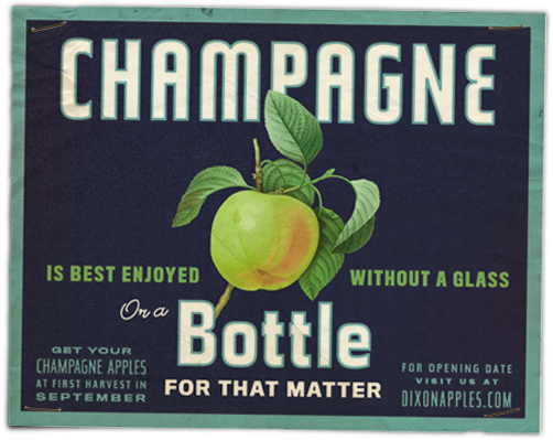 Dixon's Champagne Apples